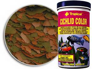 4Xlopij_Tropical_cichlid-color